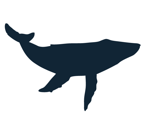 whale silhouette clipart 1. humpback whale silhouette ...